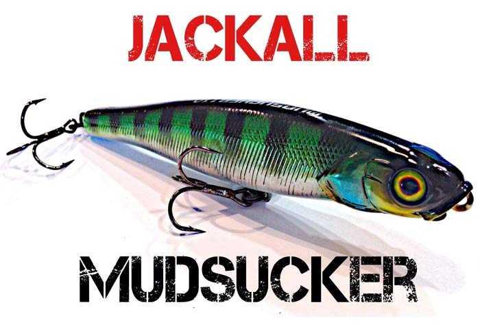 Jackall mudsucker