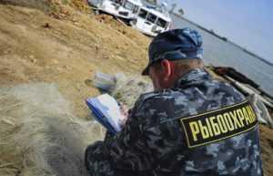 Все наказания и штрафы за нарушение правил рыболовства 2019