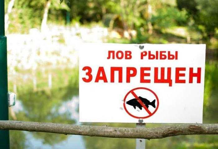 Запрет рыболовства 2018