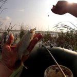 Правильная перловка для рыбалки