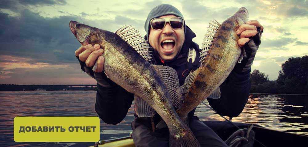 Питерский клуб рыбаков