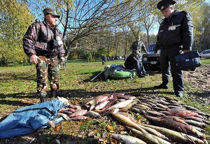 количество рыбы разрешенной к вылову в СПб