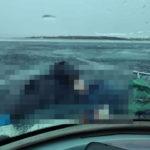 30.03.2021 Деревня Кобона автомобиль провалился под лед